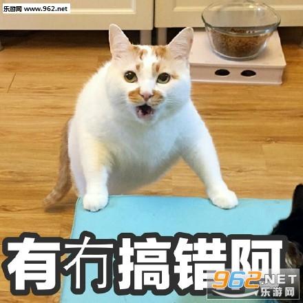 TVB台词表情萌图片萌哒表情包带字不图片a台词粤语版经典图片