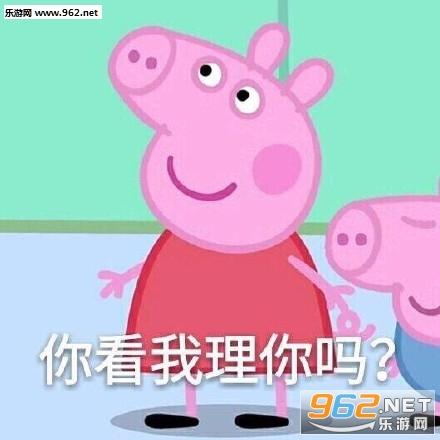 小猪佩奇无字表情动态期货的搞笑图片图片