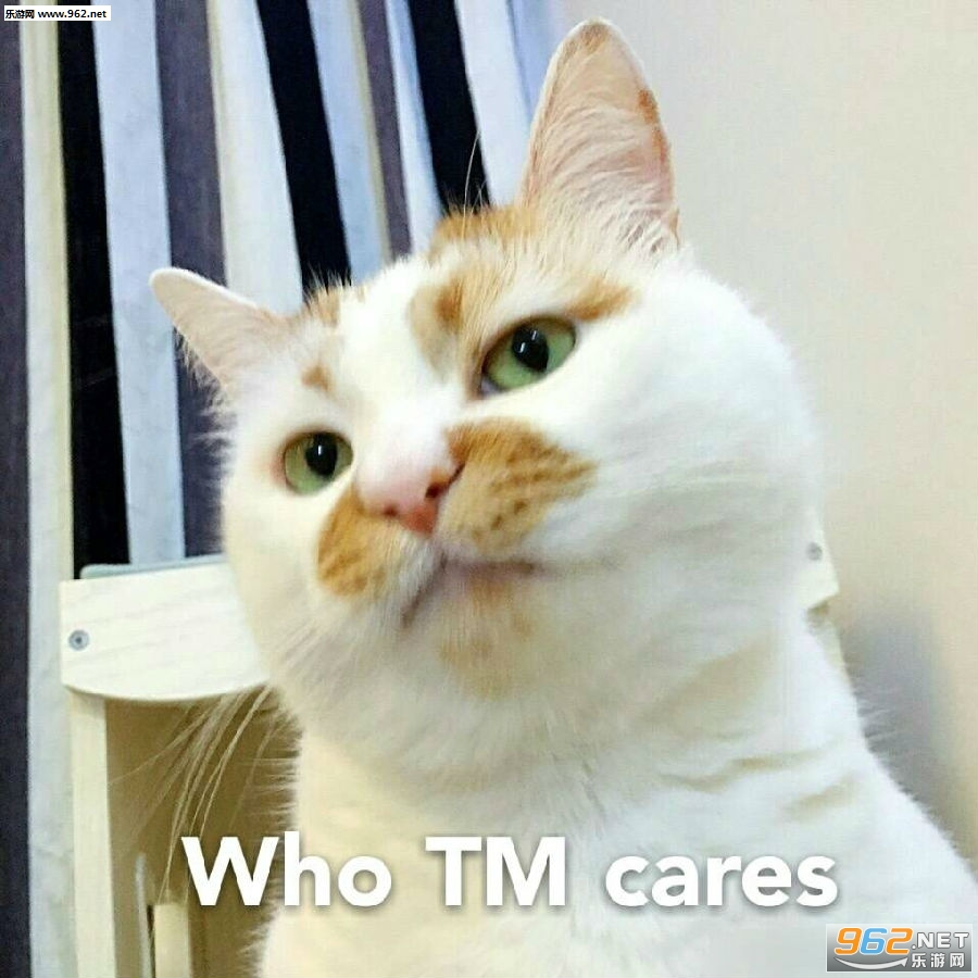 wink表情楼楼gif大全图片表情动态|一无语亲图片包催猫咪卡通大口的悲图片