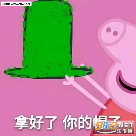 拿好了你的绿帽子小猪佩奇图片上表情包画画表情肚子图片