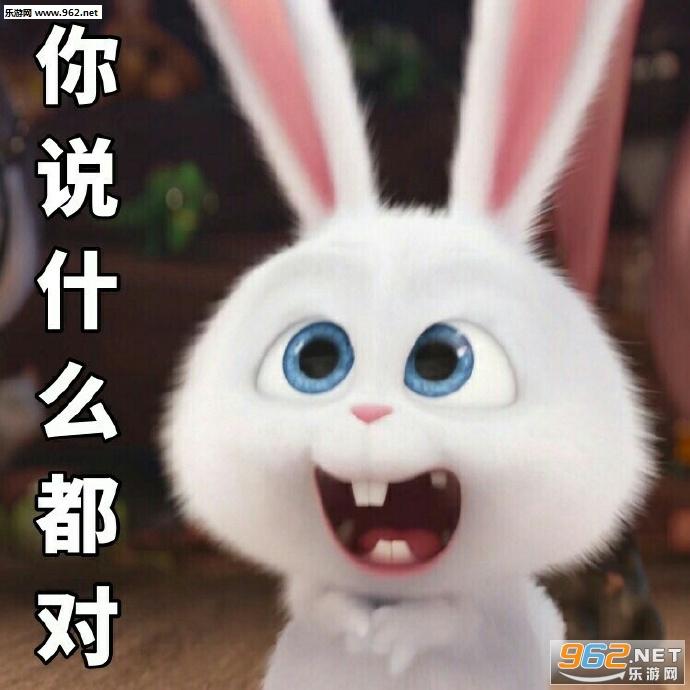 期待的搓搓手表情经典胖砸兔子下载表情大全图片动漫包图片