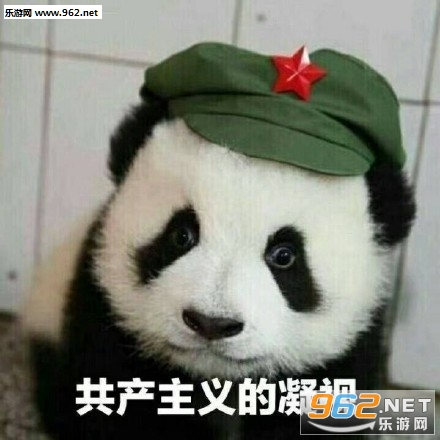 气到哭泣熊猫表情包图片图片