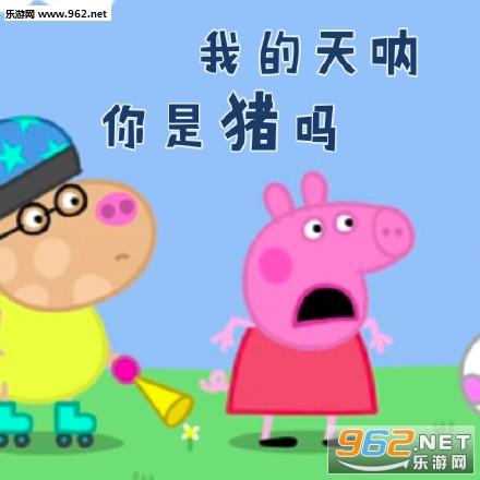 小猪佩奇正量大全黑呆唱歌表情包表情图片图片