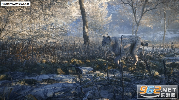 猎人荒野的召唤:梅德韦泰嘉DLCPC中文版截图1