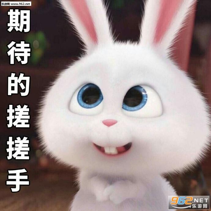 期待1的搓搓手表情表情胖砸小年搞笑v表情兔子包图片