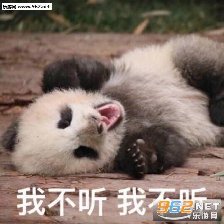 超级委屈熊猫可爱表情包