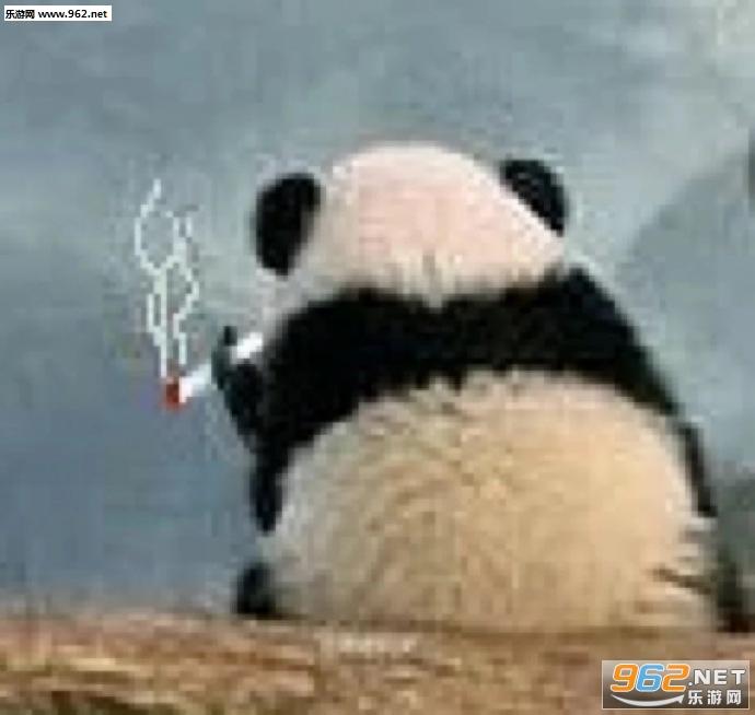 气到哭泣熊猫表情包图片