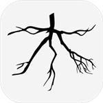 木游戏安卓v1.0