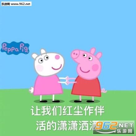 一傻子戳洗你小猪佩奇可爱表情|仰望动态的的萝卜包表情小白可爱图片