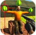 3D西瓜射击破解版v1.1