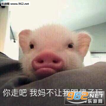 猪自杀表情包搞笑带字图片