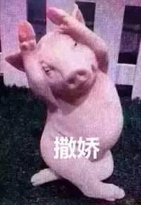 猪自杀表情搞笑带字图片图片上视频表情图片