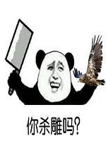 金馆长熊猫兄弟要不要系列qq动态表情包高清无水印