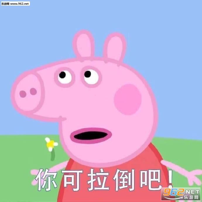 保护小猪佩奇抵制吹头小猪佩奇吹风机表情包图片