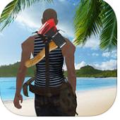 生存岛:最后希望3D手游