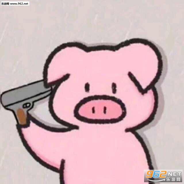 我是一个没有感情的杀手什么梗猪表情包图片图片