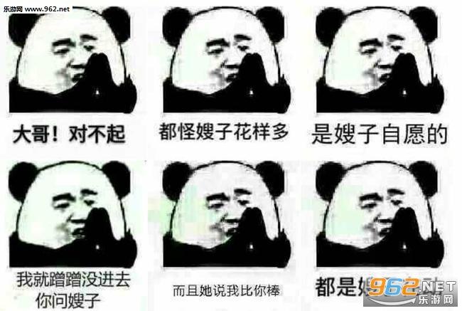 表情对不起熊猫原图形容没钱穷的表情图大哥|我愿用三年监禁换图片