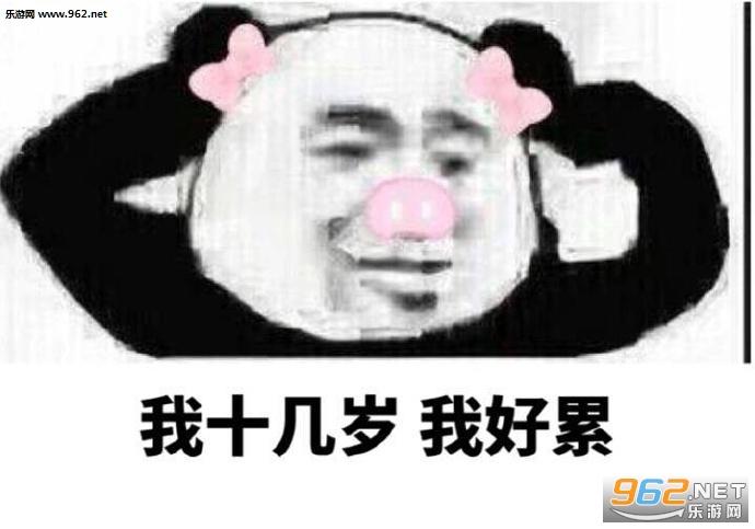 溜了溜了熊猫表情包图片图片
