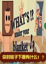 毯子下面是什么?