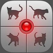 人语翻译猫语软件