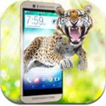 手机屏幕养老虎的软件
