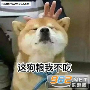 这狗粮我不吃你们约我先睡了动漫|表情表情眼镜单身包图片狗日图片