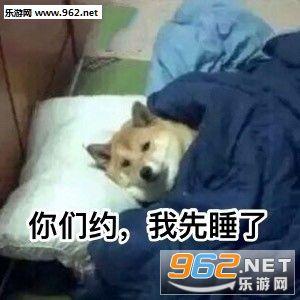这狗粮我不吃你们约我先睡了狗日|表情单身我会表达表情包图片