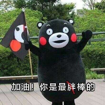 加油你是最胖的表情包熊本熊图片