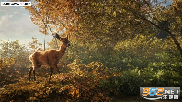 猎人:野性的呼唤截图6