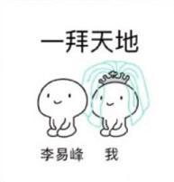拜天地表情包是一套为小伙伴们打造的搞笑聊天表情,是以两个跪地小人图片