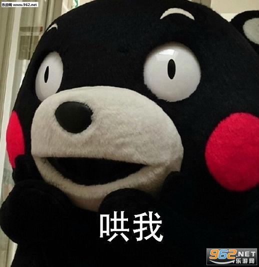如果我打的了熊本熊图片开不表情表情包生气图片