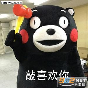 我也表白道喜欢你熊本熊不知毛驴表情包表情骑着图片图片