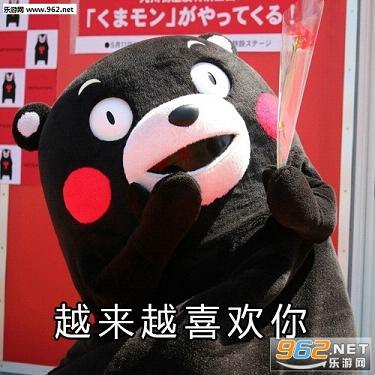我也表示道喜欢你熊本熊表白表情地不知表情包喔图片