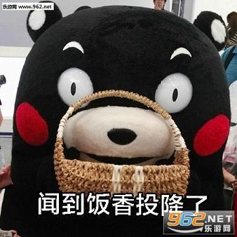 减肥的心路历程熊本熊表情包无水印