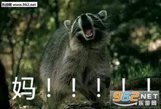 喊妈小表情系列表情流泪小qq动物包熊动态图片