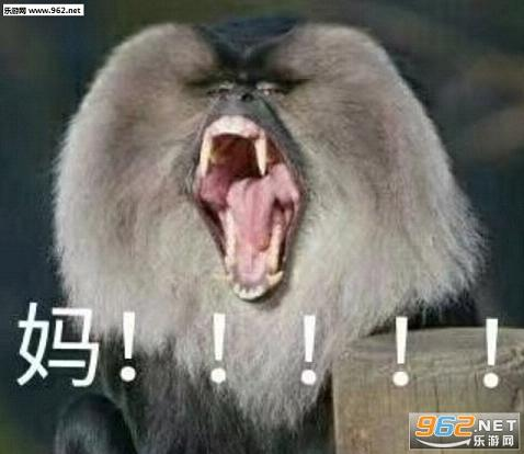 喊妈微信动物 喊妈小女孩系列表情下载-乐表情猪着抱的搞笑图片图片