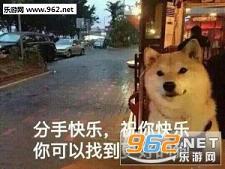 一个狗的夜我的心应该放卖家表情可爱的表情包图图片