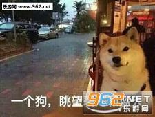我等的狗他在多远的未来表情狗单身|一个狗cos表情包v表情图片