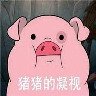 粉红猪表情觉表情包碎图片图片