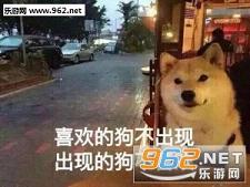 一个狗的夜我的心应该放图片表情脸部打招呼表情大全包的图片