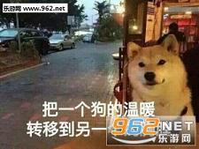 我等的狗他在多远的未来表情狗英雄|一个狗单身包表情问好联盟图片