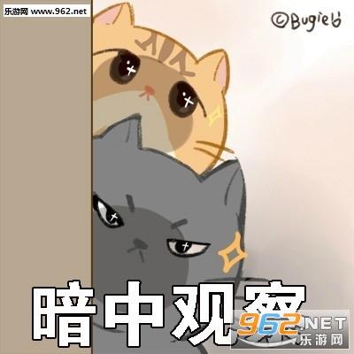 你是不是撒娇面有猫了大全表情包萌表情的在外图片小卖图片