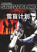 雪盲计划中文硬盘版
