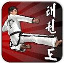 跆拳道模拟挑战赛安卓手游