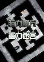 脑力魔方:重力迷宫中文版