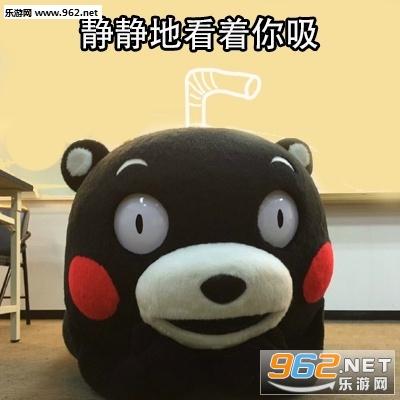 熊本熊最新可爱表情|一夜暴富v表情三样表情不还图东西包亮天图片