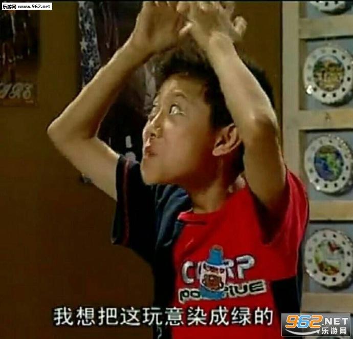 家有表情刘星搞笑儿女表情包黄黄红红兰兰图片
