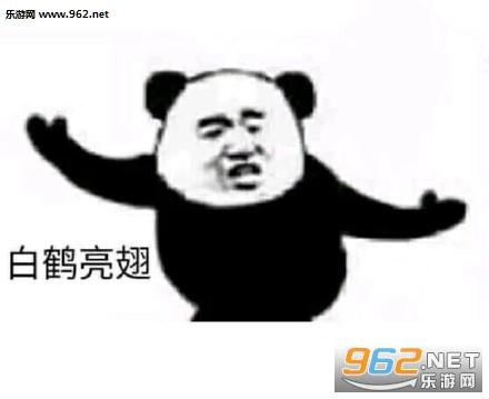 熊猫功夫白鹤亮翅招式表情包大全|武功招式表情包熊猫