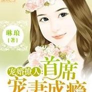 宠婚撩人:首席宠妻成瘾琳琅小说