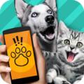 快手宠物沟通翻译软件